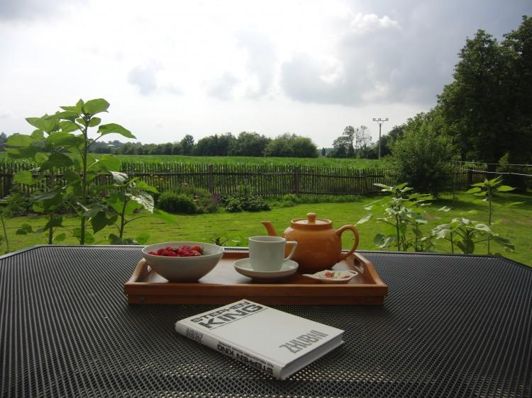 kniha a podnos s jídlem na stole