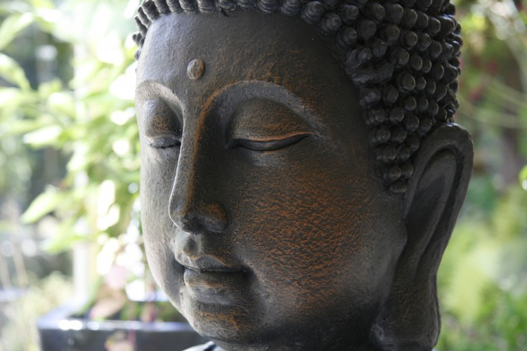 Kamenná hlava Budhy na pozadí stromů