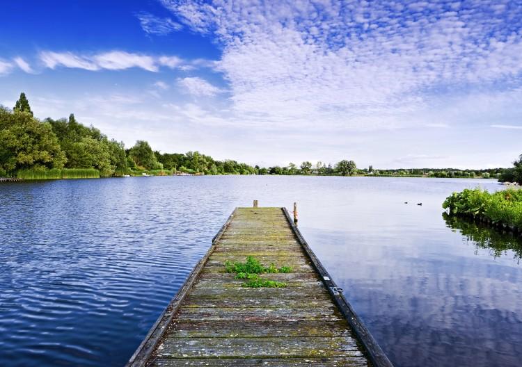 Fotka jezera za jasného letního dne