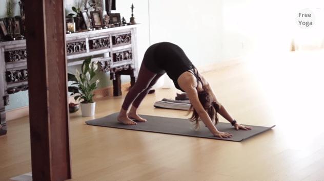 30 denní jóga výzva – 25. den –  Vinyasa jóga pro začátečníky