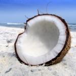 Nejuniverzálnější péče o pleť? Kokosový olej!