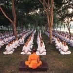Jakou podložku na jógu mají ostatní?