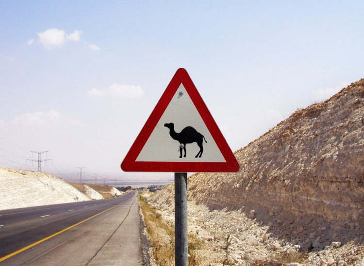 Výstražná cedule - pozor velbloudi