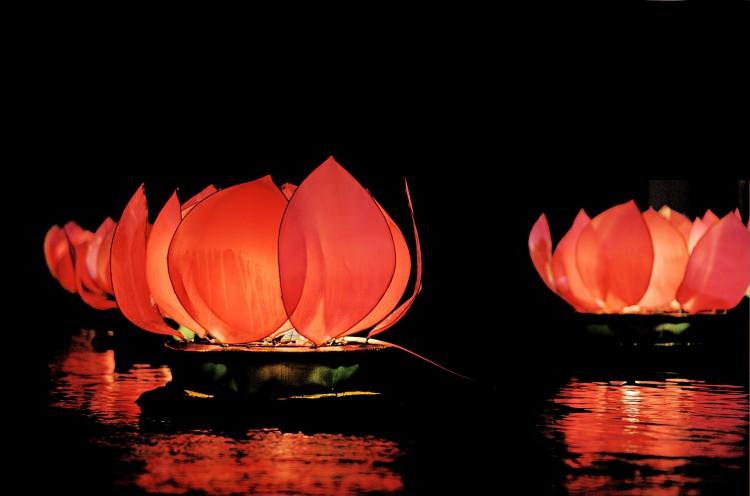 Plovoucí lampionky ve tvaru lotosu
