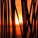 2 města, ve kterých se cvičí Bikram jóga