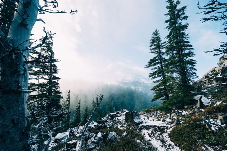 Fotka českých hor v zimě