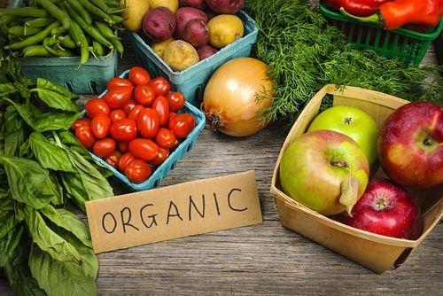 Organická zelenina a ovoce
