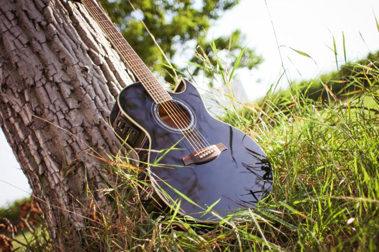 Kytara opřená o kmen stromu na louce