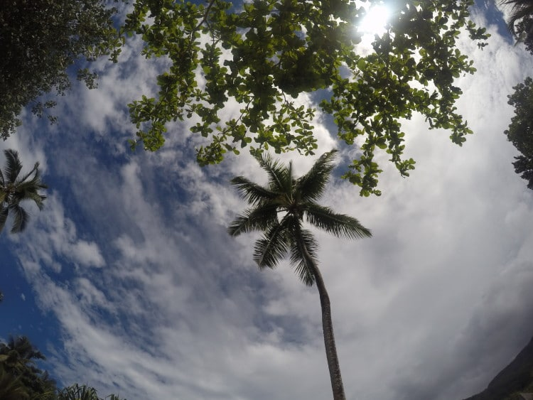 pohled na oblohu