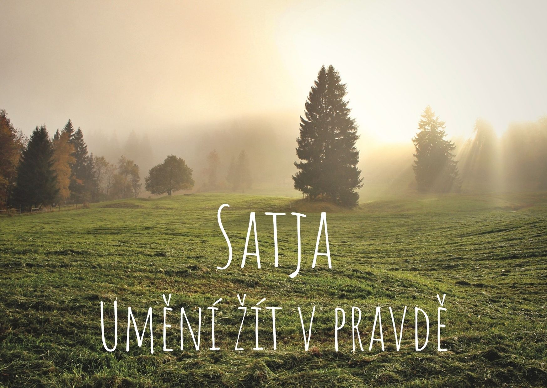 Satja